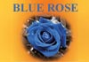 Click for more details about Blue Rose