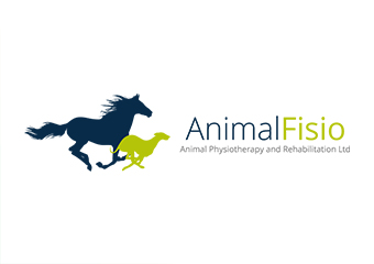 Click for more details about Animal Physiotherapy & Rehabilitation