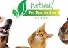 Click for more details about Kiwikitz Natural Products & NZ Native Plant Remedies